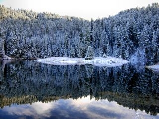 Reflective pond surrounded by snow covered trees. Image courtesy of Gospel Media library. See https://www.churchofjesuschrist.org/media?lang=eng