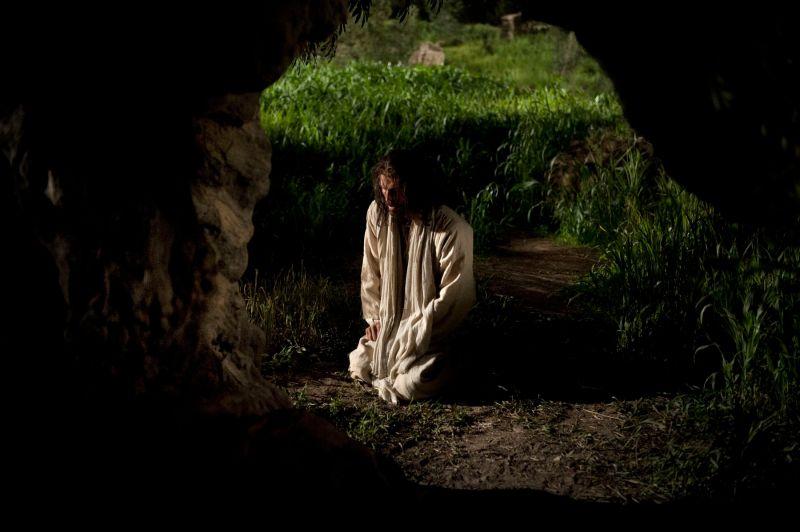 Jesus kneeling in the Garden of Gethsemane. Copyright IRI, Inc. Courtesy Gospel Media, https://www.churchofjesuschrist.org/media